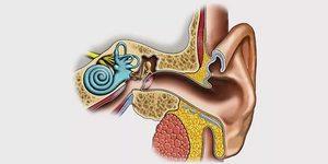 Методы лечения кохлеоневрита