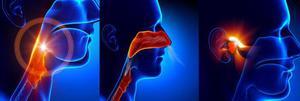 Что это такое подслизистая вазотомия нижних носовых раковин