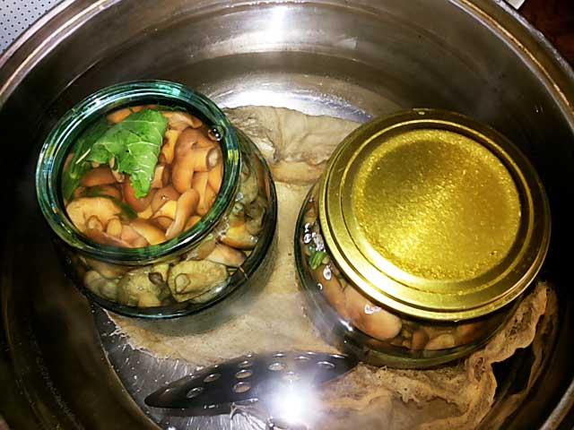 Кипячение банок с грибами