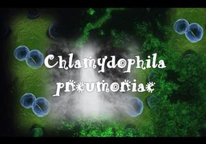 Микроорганизмы - причины пневмонии