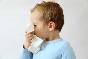 Лечение насморка Хлорфиллиптом