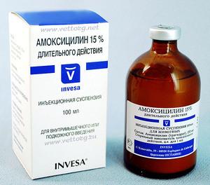 Прием препарата амоксициллина