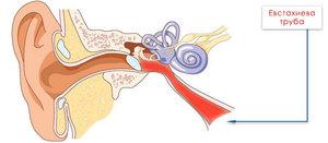 Причины ощущения пузырьков в ушах