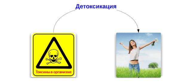 Вывод токсинов из организма