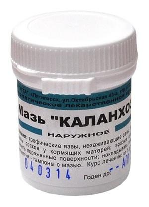 Инструкция применения сока каланхоэ в аптеке