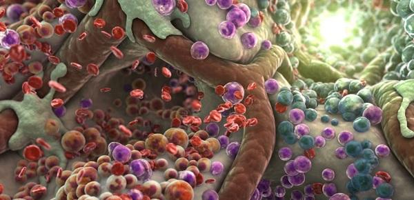 Накопление шлаков в организме